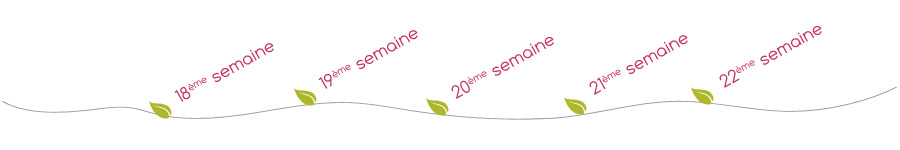 menu-fil-5emeMois