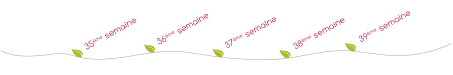 menu-fil-9emeMois