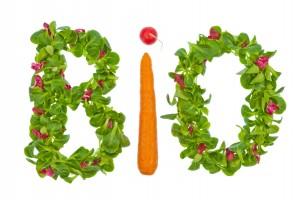 Das Wort Bio aus Salat und Gemüse geschrieben. Gesunde Ernährung mit biologischen Lebensmitteln
